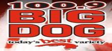 Big Dog 100.9 radio station