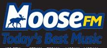 MooseFM radio station