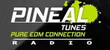 Pineal Tunes Radio radio station