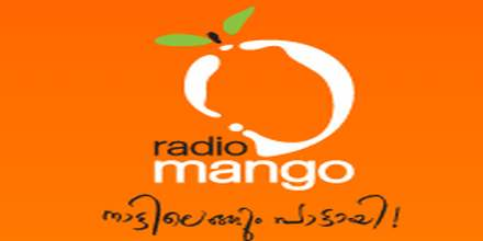 Radio Mango 91.9 radio station