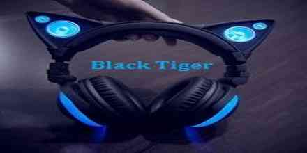 Black Tiger Recordings radio station